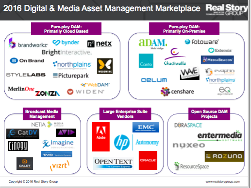 Digital and Media Asset Management Logo Landscape