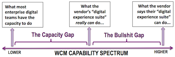 RealStoryGroup - WCM Capability Spectrum