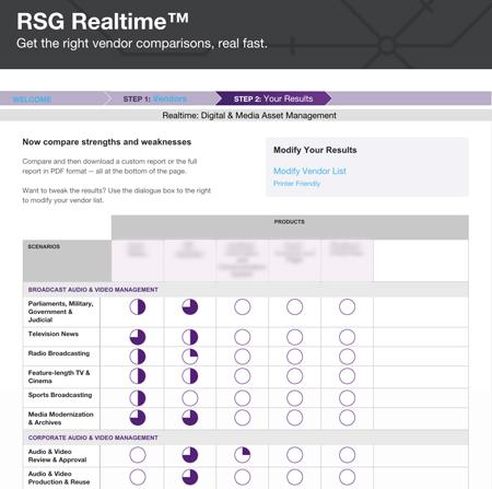 sample screenshot from RSG realtime tool